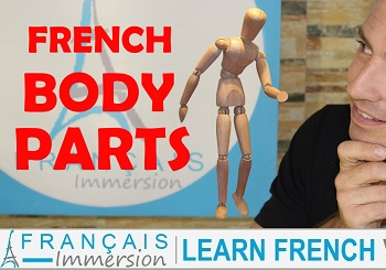 French Body Parts – Les Parties du Corps