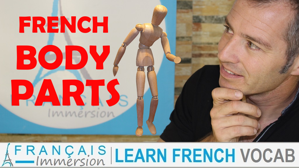 French Body Parts - Français Immersion