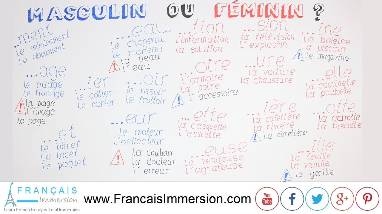 French Lesson - Gender of Nouns - Français Immersion