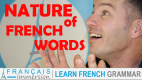 Grammatical Nature of French Words – French Grammar