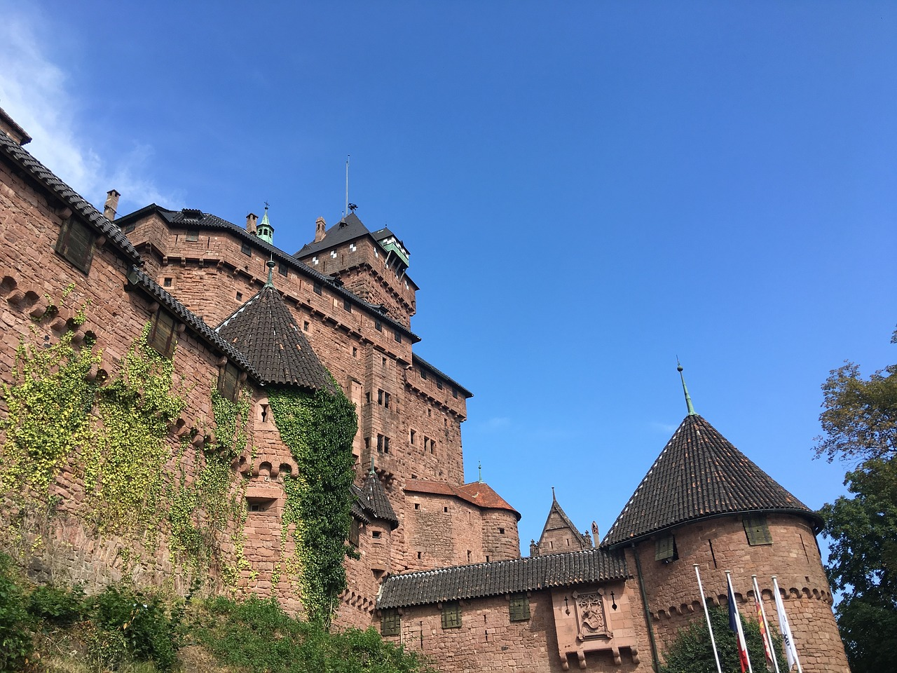 Haut-Koenigsbourg Castle- French Immersion Homestay Thomas - Français Immersion