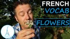 French Flowers Names – Les Fleurs en Français + FUN!